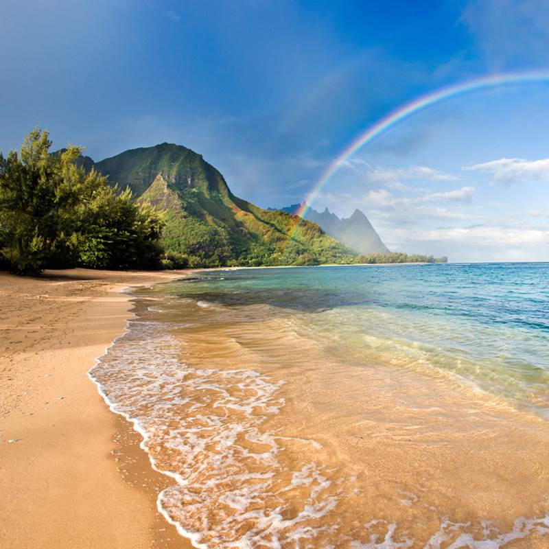Win a Trip to Hilo, Hawaii