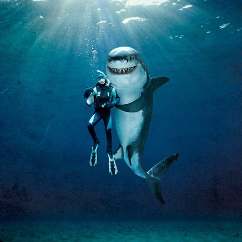 Win a $250 at Shark Week