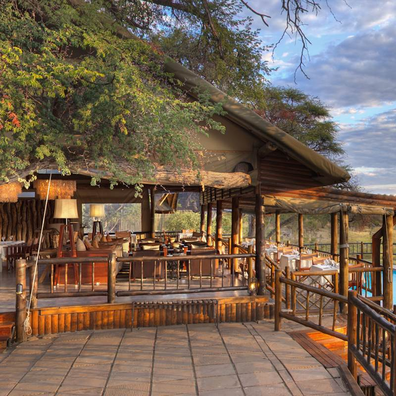 Win a Safari in Botswana