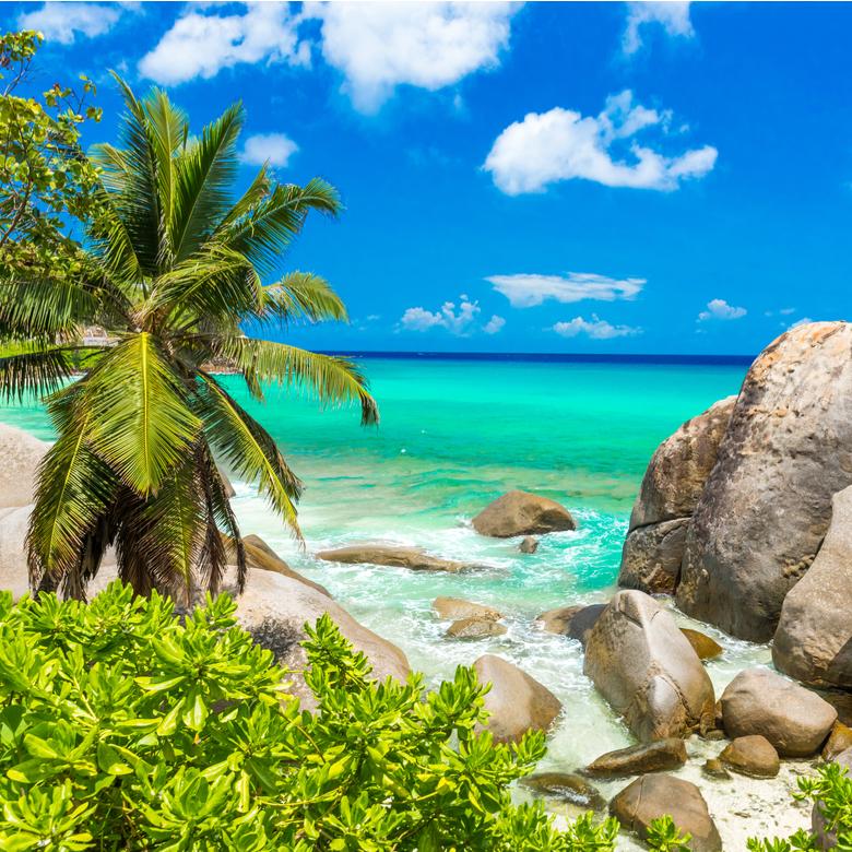 Win an escapade to Praslin, Seychelles!
