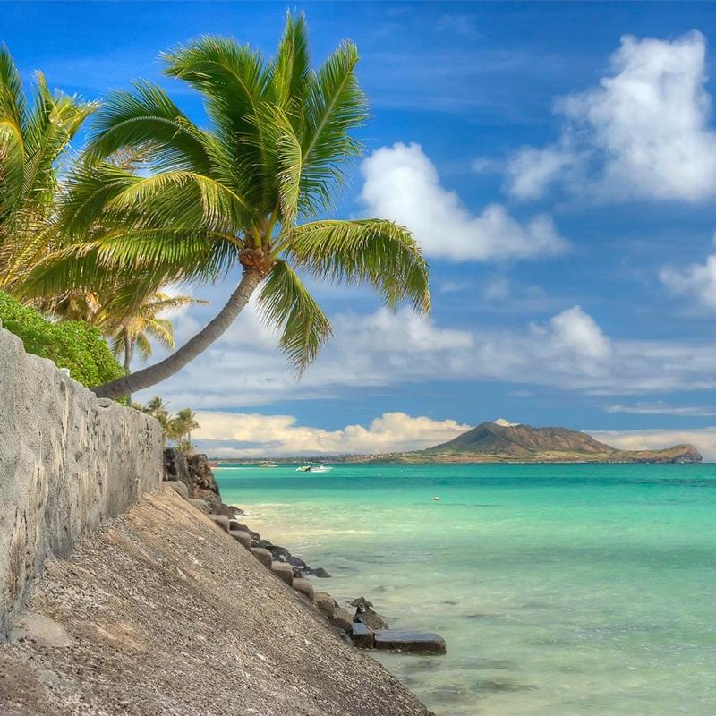 Win a Ultimate Hawaiian Holiday