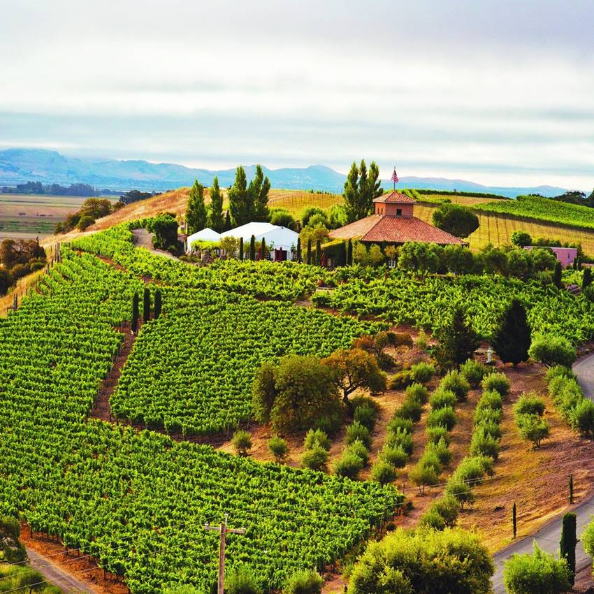 Win A Trip For Two To Sonoma County, CA, USA