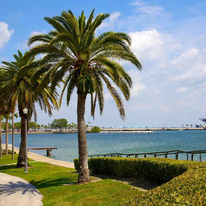 Win a Trip for four people to St. Petersburg-Clearwater, FL