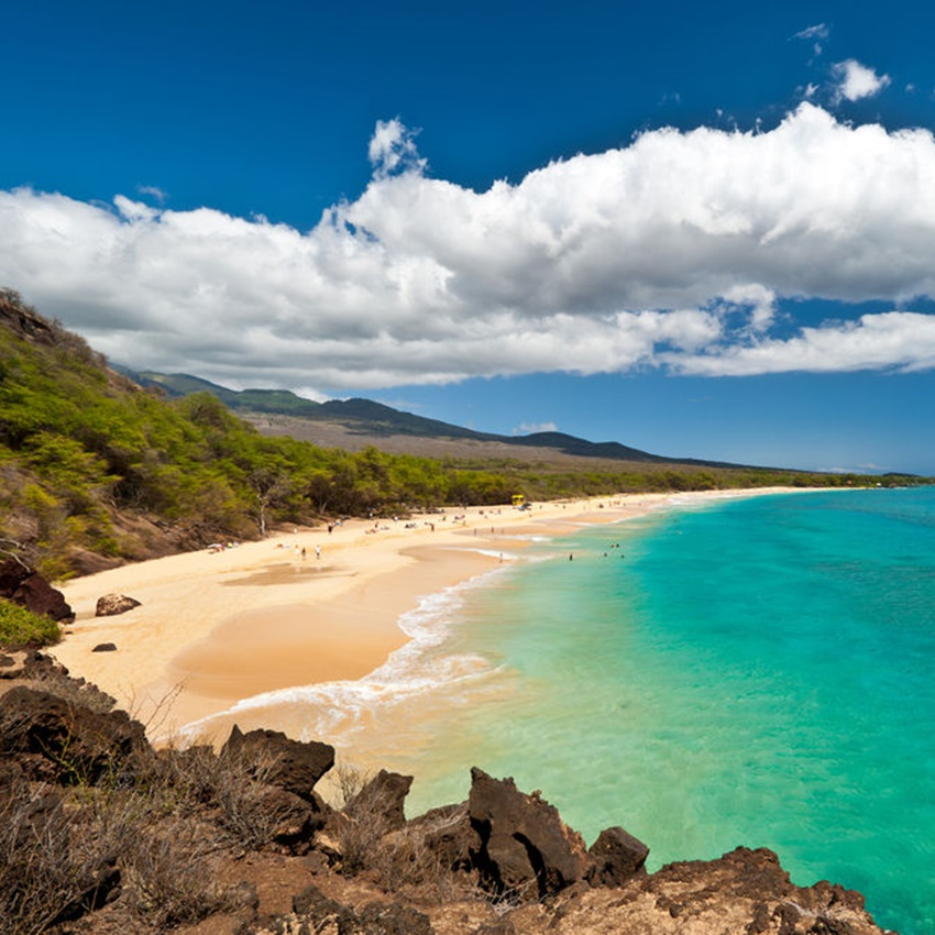 Win A Trip To Hawaii For Two!
