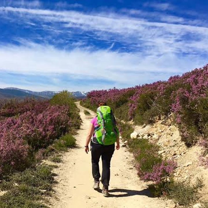 Win a Trip on the Camino walk in Spain