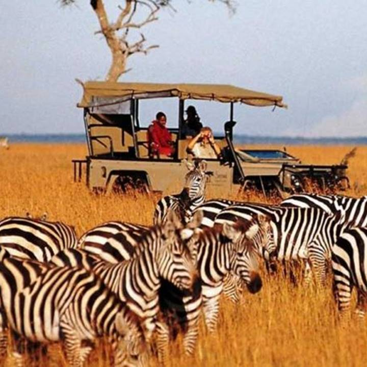 Win an Unforgettable Luxury Safari Holiday to Kenya for two worth £15,000!