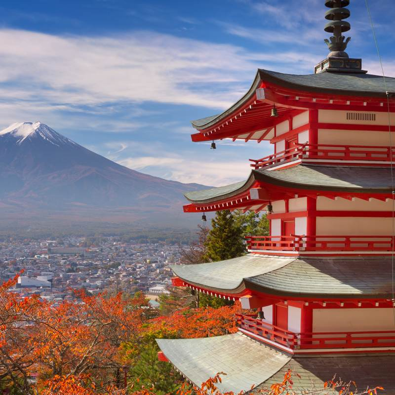 Win a Trip to Japan